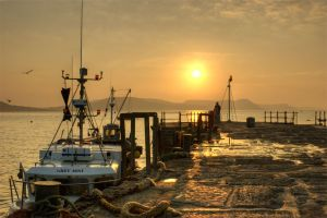 Greeting the Dawn - Lyme Regis Harbour