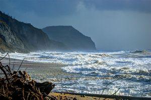 Charmouth Cliffs %26 Golden Cap